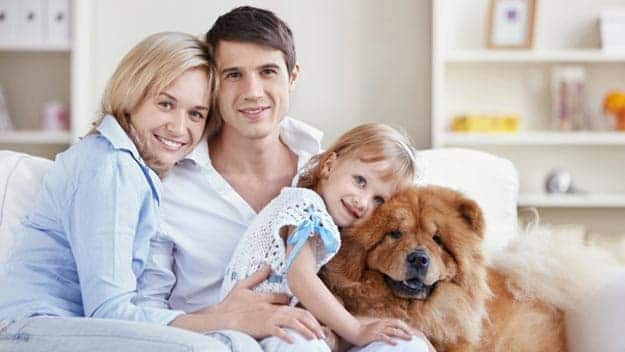 Wills & Trusts dog-young-family Direct Wills Houghton Regis